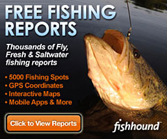 Free Fishing Report